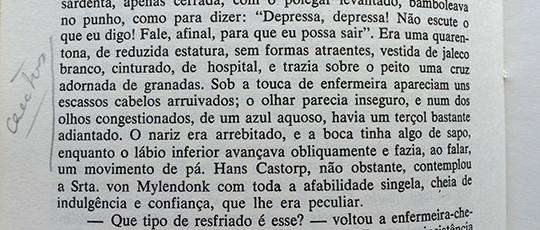 Thomas Mann: trecho do livro A Montanha Mágica, 1924.